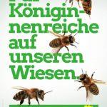 Ortsverband der Grünen verlost zehn Pflanzpakete