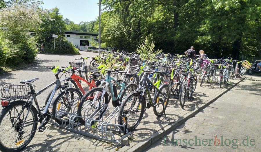 Indiz für die hohe Akzeptanz des Stadtradelns: Fast alle Fahrräder vor der Schönen Flöte tragen derzeit die gelbe Schleife am Lenker. (Foto: P. Gräber - Emscherblog)
