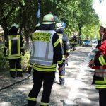 Feuerwehr im Dauereinsatz: Auch Grünstreifen am Spielplatz im Park brannte