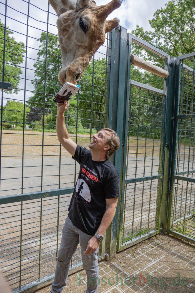 Auch dieser Giraffenbulle scheint ein Krimifan zu sein: Der Holzwickeder Autor Thomas Matiszik hielt am Samstag eine Lesung im Dortmunder Zoo. (Foto: P. Gräber - Emscherblog)