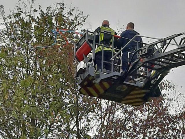 """Am Nachmittag """"rettete"""" die Feuerwehr dann mit der großen Drehleiter den Drachen des Jungen aus dem Baum an der Feuerwache,. (Foto:privat)"""