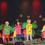 Vorweihnachtliche Feier für Senioren in der Rausinger Halle