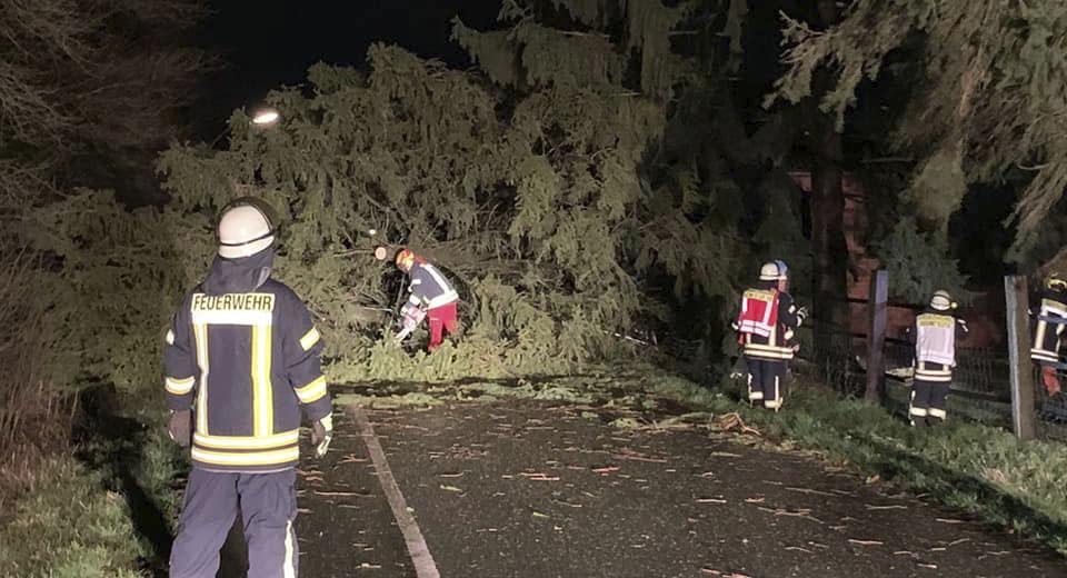 Auch an der Schwerter Straße musste die Feuerwehr in der Nacht umgeworfene Bäume beseitigen. (Foto: privat)