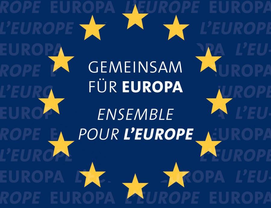 Gemeinsam für Europa-©VDFG.de