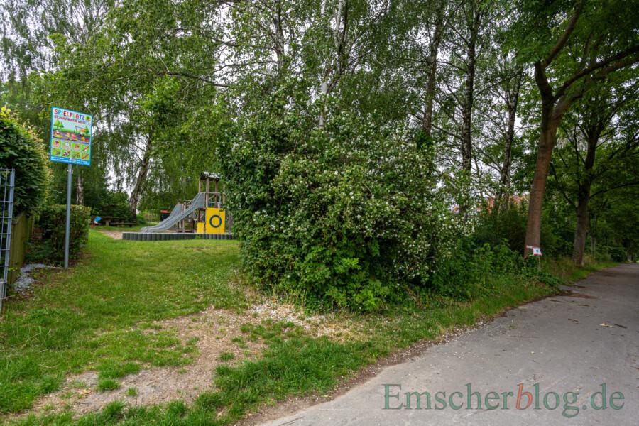Dieses Foto zeigt die Gesamtsituation am Spielplatz Schwarzer Weg: Im Bild rechts der befallene Baum. (Foto: P. Gräber - Emscherblog)