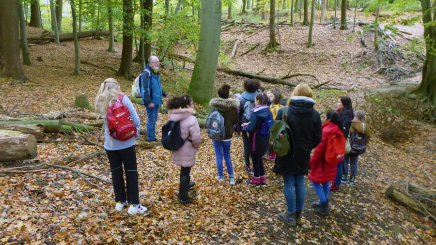 Andreas Witte, Waldpädagoge der Waldschule Cappenberg, hier mit den Schülerinnen und Schülern der Klasse 4 b der Nordschule, führte die Kinder durch den Wald. (Foto: Regine Hees - GWA Kreis Unna)