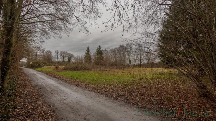 Die Fläche rechts neben dem Vereinsgelände des TuS Elch am Wertstoffhof könnte nach Ansicht der SPD als Freilauffläche und Hundewiese geeignet sein. (Foto: P. Gräber - Emscherblog)