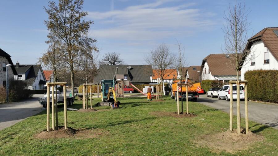 Auf der Grünfläche angrejzend zum Spielplatz an der Keltenstraßé wurden fünf Juingbäume gepflanzt. (Foto: Gemeinde Holzwickede