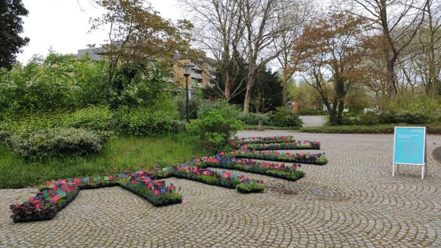 """Auch am Platz von Louviers waren die Stauden im Rahmen der Aktion """"Blühende Wiesen""""vondem Energieunternehmen zur kostenlose Mitnahme aufgestellt worden. (Forto: Westenergie)"""