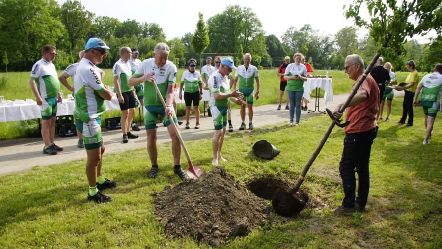 Als Symbol für den Erhalt der Alleen pflanzten die Teilnehmer vor ihrer Weiterfahrt ein Bäumchen in der Parkanlage von Haus Opherdicke. (Foto: Gemeinde Holzwickede)