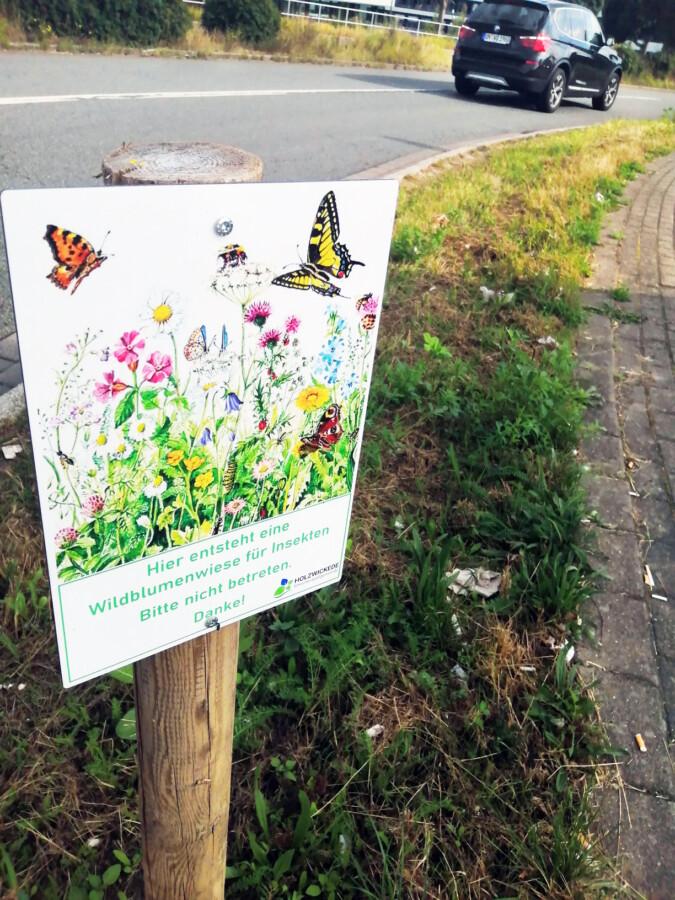 Wildblumenwiesen haben es nicht leicht in der Gemeinde Holzwickede